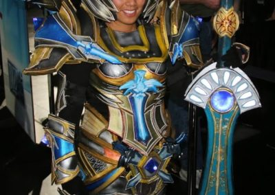 Challenge Mode World of Warcraft Paladin Cosplay Blizzcon